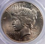 1928 PEACE DOLLAR PCGS MS 62 FLASHY WHITE WITH GREAT STRIKE LUSTER & FAINT BLUSH