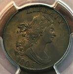 1805 HALF CENT LARGE 5 STEMS PCGS AU50 CAC SHARP AND BEAUTIFUL CHN