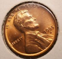 U.S. 1955  D   LINCOLN CENT   UNC  RED