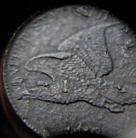 1858 LL FLYING EAGLE HIGH-GRADE SMALL COPPER-NICKEL CENT COIN DYE BREAKS ERRORS