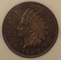 1888 INDIAN HEAD CENT NGC MS 63 BN PL SURFACES. DEEP WINE COLOR.