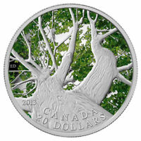 2013 $20 SILVER 1 OZ CANADIAN SPRING MAPLE CANOPY. COLORIZED COIN. COA BOX CASE
