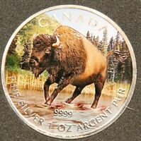 2013 $5 1 OZ FULL COLOUR WOOD BISON SILVER MAPLE LEAF CANADA WILDLIFE   CASE COA