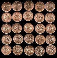 CANADA COIN COLLECTION UNC COPPER PENNIES 1963 1964 1965 1966 AND 1967
