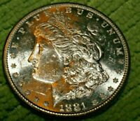A818,MORGAN SILVER DOLLAR,1881 S VAM 1A1 DMPL HIGH GRADE SELDOM SEEN