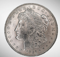 1921 MORGAN SILVER DOLLAR VAM-41B TOP-100 PITTED REVERSE UNCIRCULATED