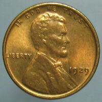 GEM BU 1929 LINCOLN WHEAT CENT   ALMOST MARK FREE