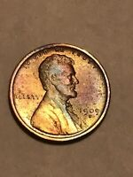 1909 S LINCOLN CENT WHEAT PENNY AVIVIDLY PURSUED DATE HIGH G