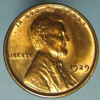 1929 LINCOLN CENT   DAZZLING FULL RED & CLOSE TO GEM BU