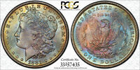 1881 MORGAN DOLLAR PCGS MINT STATE 64 CAC BEAUTIFUL DOUBLE SIDED TONER