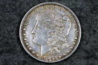 ESTATE FIND 1882  MORGAN SILVER DOLLAR  L00645