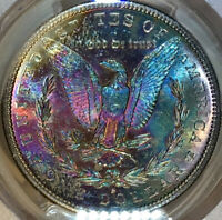 1882-S MORGAN DOLLAR PCGS MINT STATE 64 RAINBOW TONED SNOW CAMEO PL-DMPL OBVERSE W/VIDEO