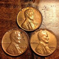 3 AU  WHEAT CENT LINCOLN CENT ANTIQUE  US COIN 1953 D,1954,1955 D  266F