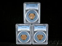 3 PIECE LOT 1909 D 1910 AND 1911 INDIAN HEAD GOLD $5 HALF EA