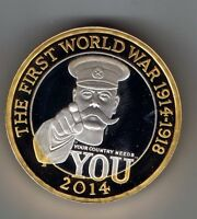 2014 SILVER PROOF TWO POUND 2 COIN   12G  : FIRST WORLD WAR