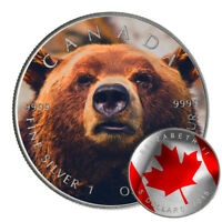 GRIZZLY BEAR   2015 1 OZ PURE SILVER CANADIAN COIN   COLOR A