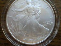 2005  $1  SILVER  EAGLE, GEM BRILLIANT UNCIRCULATED, ENCAPSULATED
