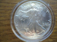 1991  $1  SILVER  EAGLE  GEM  BRILLIANT  UNCIRCULATED  ENCAPSULATED