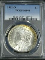1902-O MORGAN DOLLAR PCGS MINT STATE 65 BLAST WHITE HINT OF GOLD & FROSTY LUSTER PQ G142