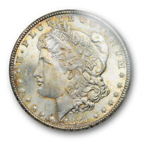 1881 CC $1 MORGAN DOLLAR ANACS MINT STATE 64 UNCIRCULATED CARSON CITY MINT GOLDEN TONED