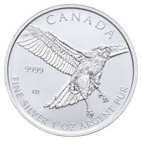 BETTER DATE   2015 CANADA $5   1 OZ. SILVER RED TAILED HAWK
