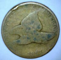 1857 FLYING EAGLE CENT COMBINED SHIPPING W/ OTHER COIN PURCHASES COLLECTION BL1