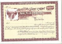 AMERICAN SILVER COPPER MINING MILLING & REDUCTION CO..1800'S UNISSUED STOCK