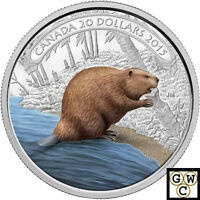 2015 'BEAVER AT WORK' COLOR PROOF $20 SILVER COIN 1OZ .9999 FINE NT  15287 OOAK