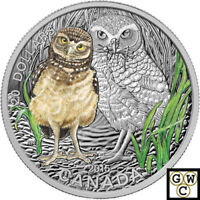 2015 BURROWING OWL BABY ANIMALS COLORIZED PRF $20 SILVER 1OZ .9999 FINE 15286 NT