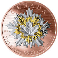 CANADA 2019 50$ MAPLE LEAVES IN MOTION 5OZ SILVER COIN