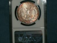 1882 NGC UNC DETAILS & RAW 1889 MORGAN SILVER DOLLARS SHIPPED INSURED FREE