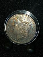 1882-P MORGAN CERTIFIED SILVER DOLLAR NATURAL TONE COA NCM IMG-6279