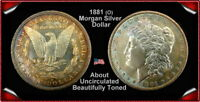 1881O MORGAN SILVER DOLLAR UNCIRCULATED TONED BEAUTY
