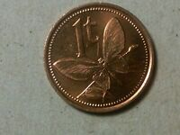 PAPUA NEW GUINEA 1 TOEA 1981 COIN BUTTERFLY