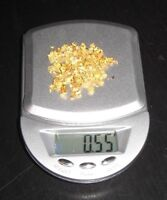 0.55 GRAMS   100  PURE YELLOW DENTAL GOLD SCRAP  NO OTHER ME