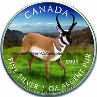 2013 CANADA WILDLIFE SERIES ANTELOPE   1 OUNCE PURE SILVER C