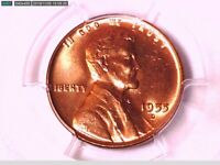 1955 D LINCOLN WHEAT CENT PCGS MINT STATE 65 RD 80841870 VIDEO