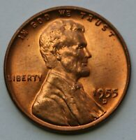 1955 D LINCOLN WHEAT CENT BU US COIN