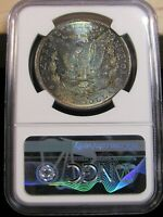 1880 S MORGAN SILVER DOLLAR NGC MINT STATE 64 BLUE TONED REVERSE