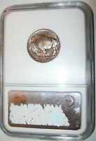 LOT OF ONE  1  NGC CERTIFIED MS65 1937 BUFFALO NICKEL COIN