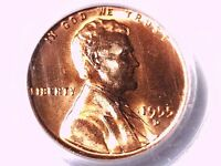 1955 D LINCOLN WHEAT CENT PCGS MS 65 RD 9962856