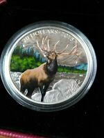 2015 RCM MAJESTIC ELK SILVER $20 COLOURISED COIN NO RESERVE