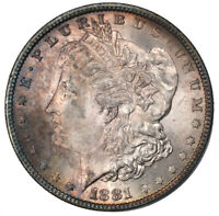 1881-P MORGAN SILVER DOLLAR TONED UNCIRCULATED $1 BU / MS