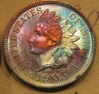 TONED UNCIRCULATED 1905 INDIAN CENT ONLY $69- MAKE A CLOSE OFFER