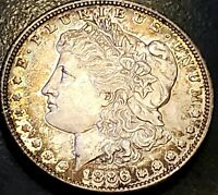 1886 S MORGAN DOLLAR KEY DATE WITH TONING