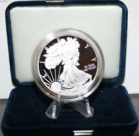 2013W PROOF AMERICAN SILVER EAGLE PROOF