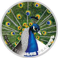 MAJESTIC BLUE PEAFOWL   BEAUTY AND POWER PLAIN SILVER COIN 2