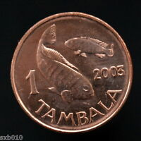 MALAWI 1 TAMBALA 2003 MAGNETIC. KM33A  UNC AFRICA COIN. ANIMALS  FAUNA  FISHES