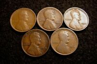LOT 1909-P 1912-P 1913-P 1914-P 1915-P G/VG CIRCULATED LINCOLN WHEAT CENTS