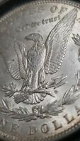 1889 P MORGAN SILVER DOLLAR ENCAPSULATED // SEE PICTURES,  DETAIL
